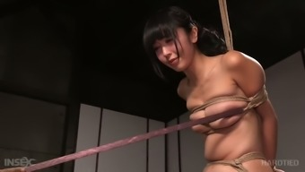 Tightly bound Asian GF Marica Hase had hard BDSM scene with black man