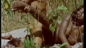 Tropical Paradise (1976)
