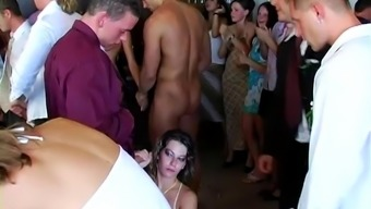 Lewd cowgirls get fucked silly at a kinky wedding after party