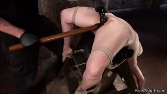 Natural busty milf caned in hogtie