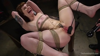 Bondage and spanking is a new experience for sweet Barbary Rose