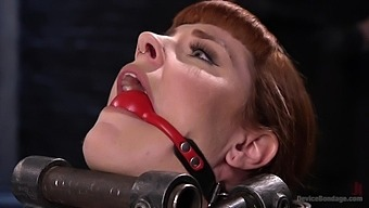 BDSM and a slave role is amazing experience with pretty Barbary Rose
